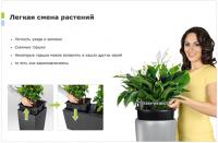 легкая смена растений