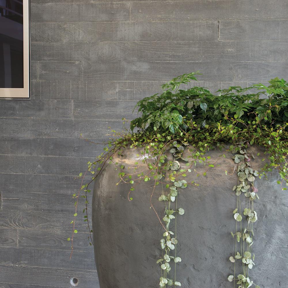 Kashpo Fleur Ami Loft Room Divider Aluminium Kupit V Internet Magazine Freshplants Ru S Dostavkoj Po Moskve Oblasti Rossii